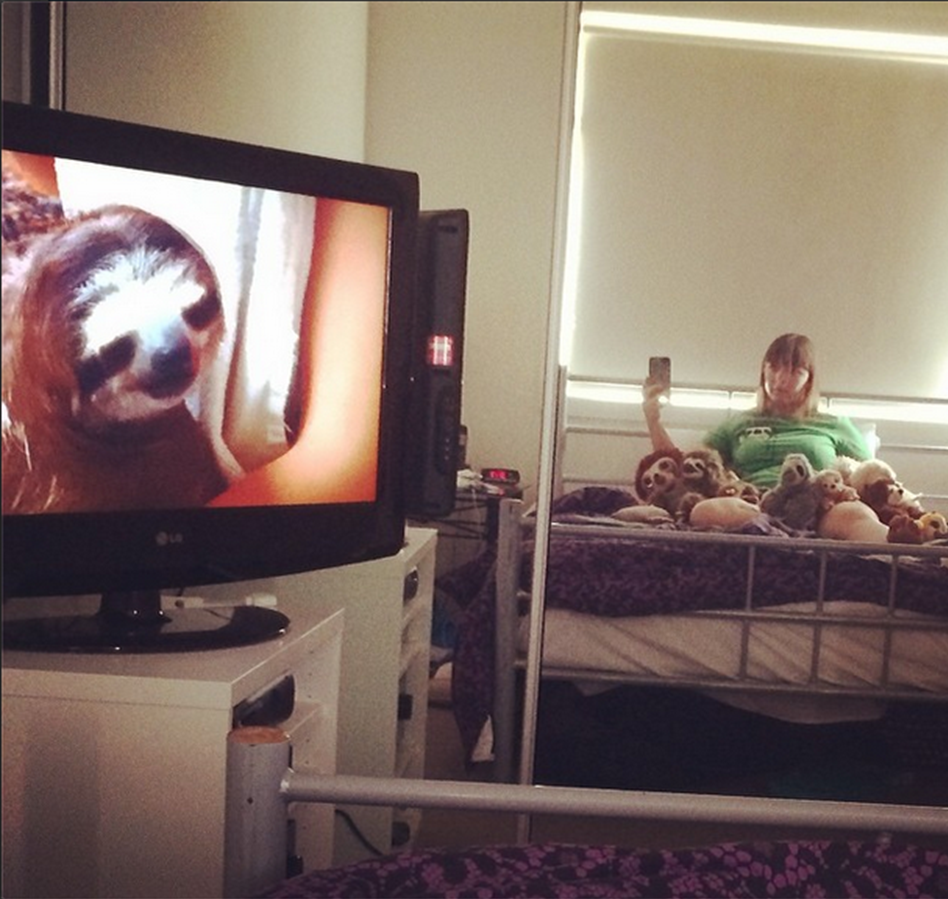 relaxwithsloths
