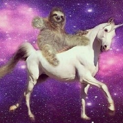 unicornsloth