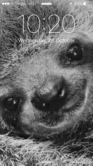 lockscreensloth